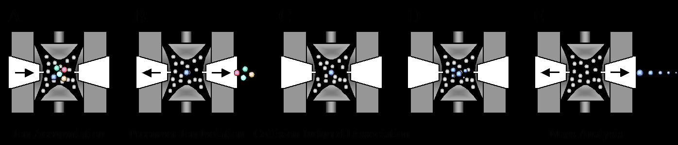 质谱分析_基云生物|专注蛋白质研究服务